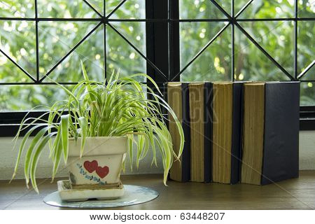 library book learn tree light read nature poster