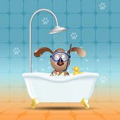 an illustration of Dog With Diving Mask In Bath poster