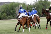 A Polo team chases after a shot during a Polo match (focus point on foreground player). poster
