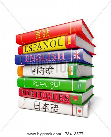 Foreign world languages study concept background - stack of dictionaries isolated on white background poster