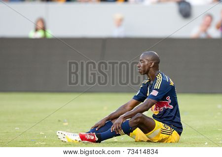 CARSON, CA - SEPT 28:  Bradley Wright-Phillips during the Los Angeles Galaxy MLS game against the New York Red Bulls on Sept 28th, 2014 at the StubHub Center.