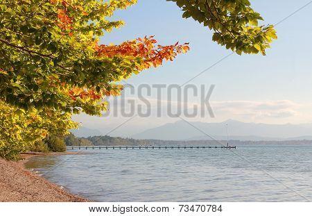 Idyllic Autumnal Lake Shore Starnberg Lake