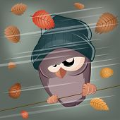 funny cartoon bird in stormy weather poster