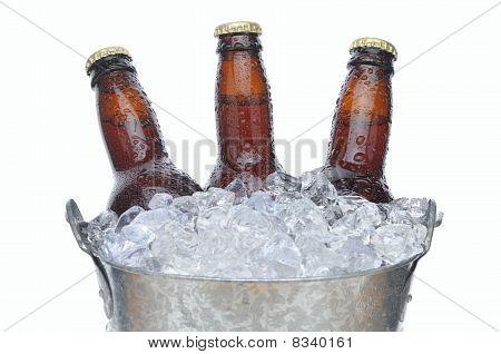Three Beer Bottles