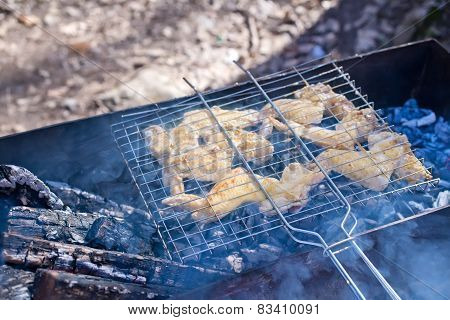 BBQ in the forest