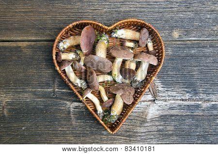 Mushrooms Fungi Cep Boletus Xerocomus Badius In Heart Form Basket