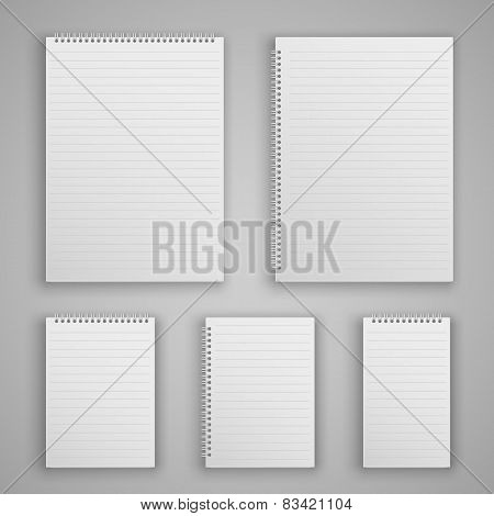 Set blank realistic spiral notepad