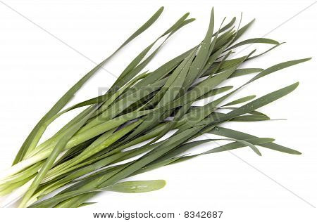 Wet Green onions (still-lif on white background ) poster
