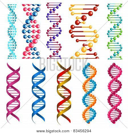 Colorful DNA molecules and cells