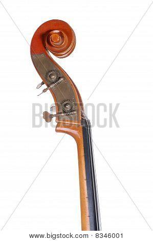Headstock Bass.