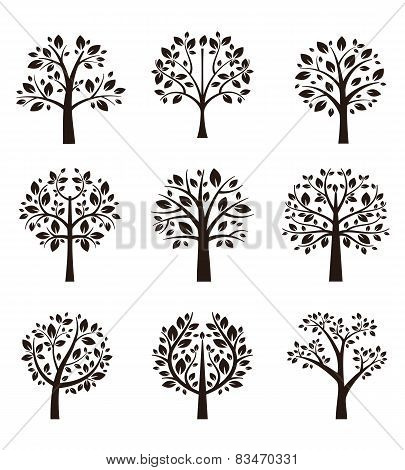 Tree silhouette with roots and branches