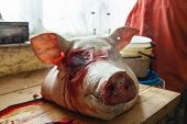 fresh head of death pig - raw meat poster