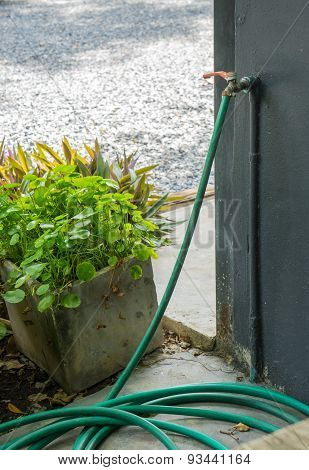 A Water Spigot With A Green Hose Springs A Leak In Garden