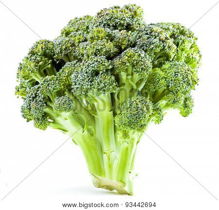 Broccoli close up on a white background