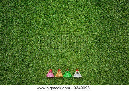 Badminton shutlecocks lying on grass