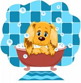 The dog bathes in a bathroom. Cartoon vector illustration. poster