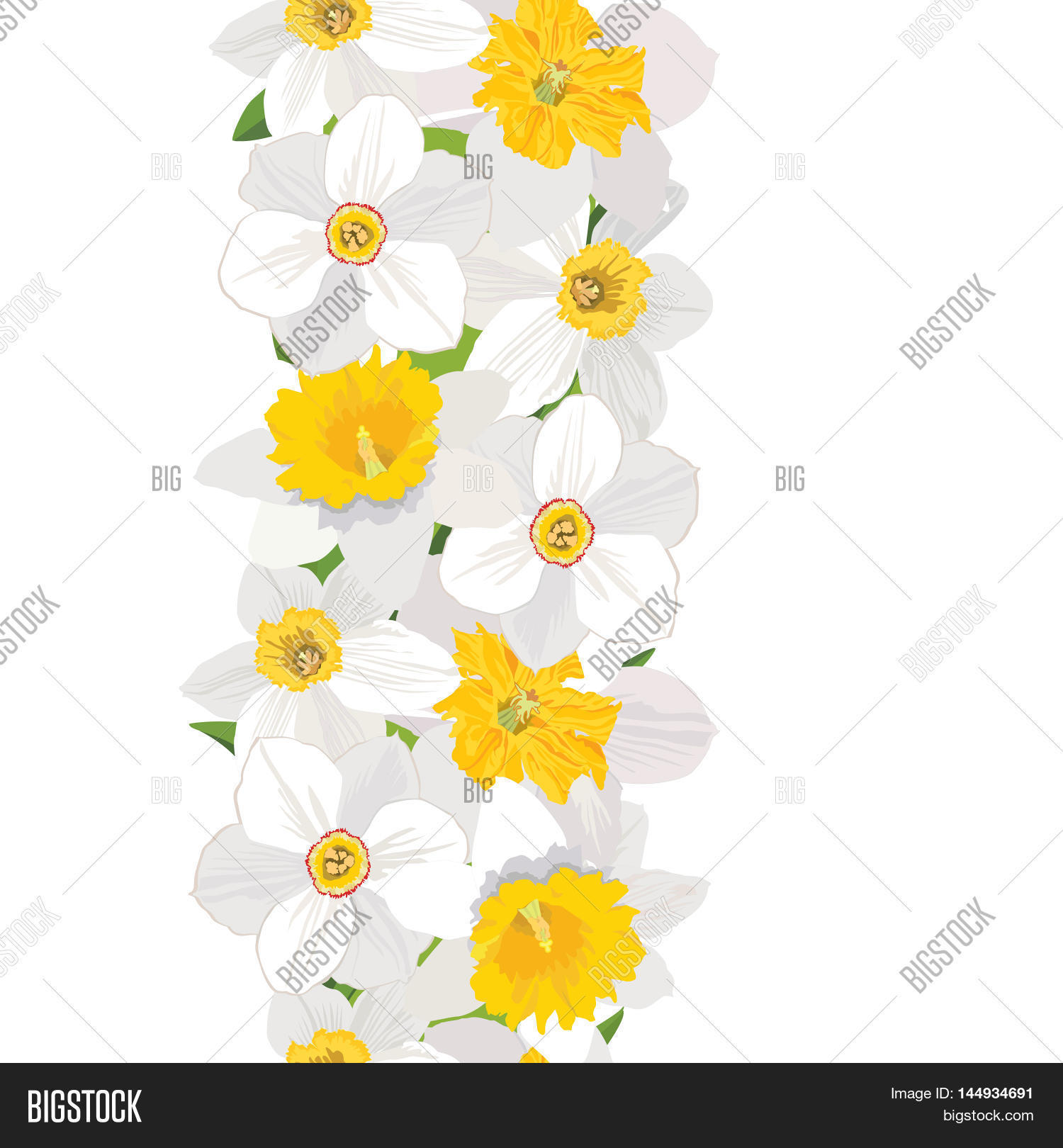 Floral Seamless Vertical Border Spring Pattern Flower Daffodil White Background Wreath With