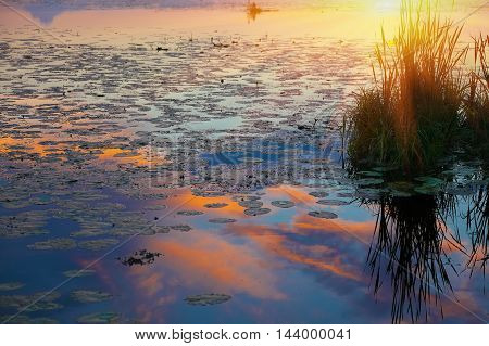 Beautiful sunset over calm lake.Mirorr reflection in water
