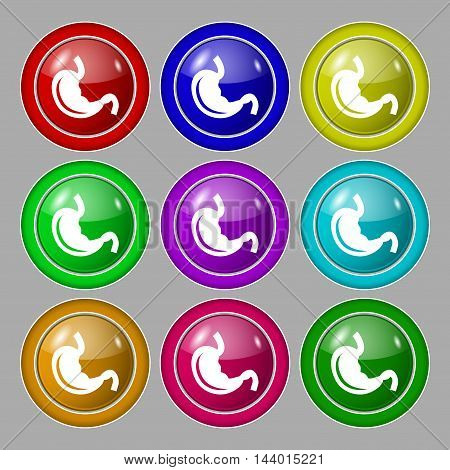 Stomach Icon Sign. Symbol On Nine Round Colourful Buttons. Vector