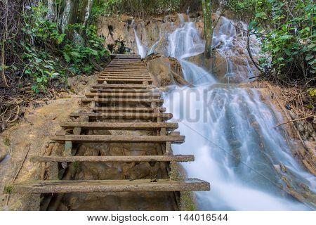 Wood Stair Steps In Tat Kuang Si Luang Prabang, Laos