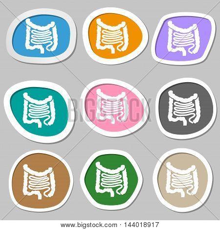 Intestines Symbols. Multicolored Paper Stickers. Vector