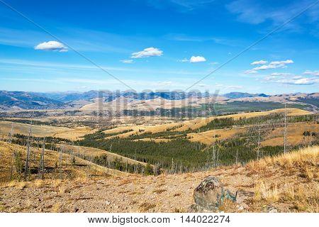 Landscape Near Mount Washburn