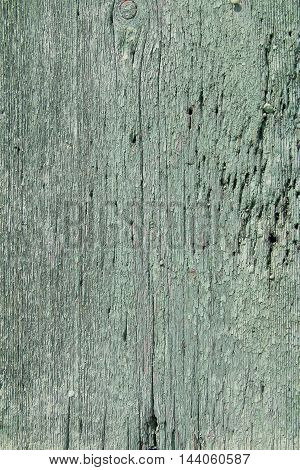 The picture shows part of the window blinds. When close-visible structure of the old painted boards.