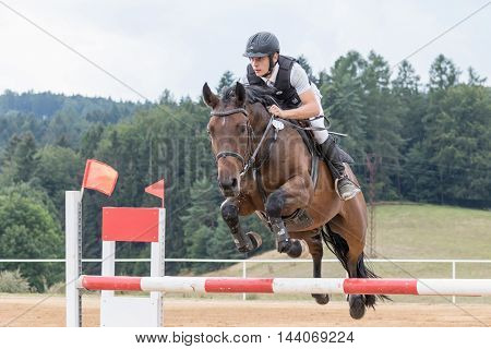 SVEBOHOV CZECH REPUBLIC - AUG 20: Young horseman in protective vest during the jump on a brown horse at