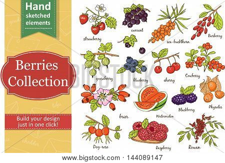 Collection of berries: strawberry currant gooseberry blueberry cherry brier blackberry. Vector illustration of berries for design menus, recipes and packages product.