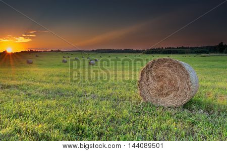 Countryside summer field with rolls of haystacks on hilly horizon. Focus is on the nearest roll