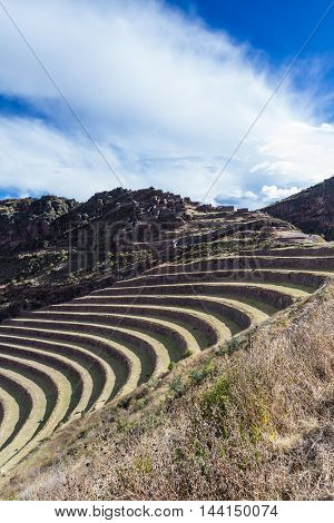 Farming Terraces By The Inca