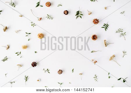 frame with yellow dry flowers branches leaves and petals isolated on white background. flat lay overhead view