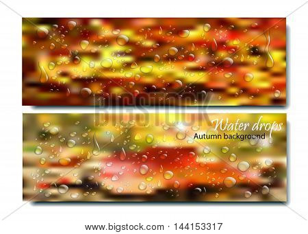 Realistic water droplets on the autumn background.Vector beautiful concept of autumn rainy window with water drops and droplets on orange blurred background with bokeh. Rain drops on glass. Autumn day vector concept. Many rain drops on fall window.