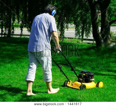 Mowing The Backyard