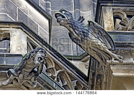 gargoyle at the teyn-cathedral on the hradschin in prague