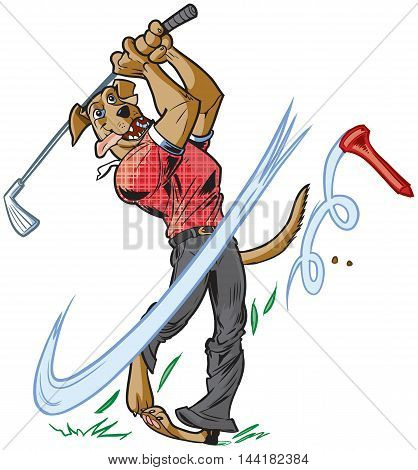 Vector cartoon clip art illustration of an anthropomorphic brown dog mascot wearing a shirt and pants swinging a golf club with a tee flying away.