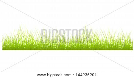 Grass meadow background horizontal medicine seedling rural
