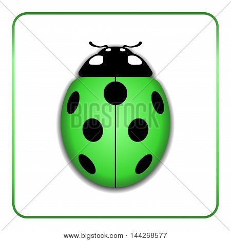 Ladybug small icon. Green lady bug sign isolated on white background. 3d volume design. Cute colorful ladybird. Insect cartoon beetle. Symbol of nature spring or summer. Vector illustration