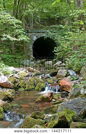 a small stream emerges from a stone tunnel in the woods