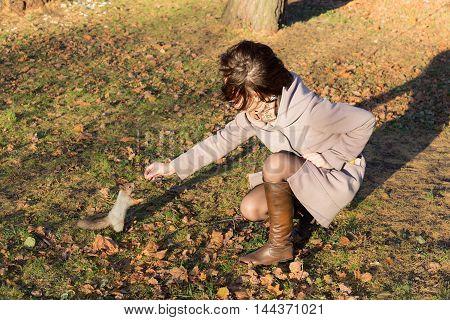 girl feeding squirrel in the autumn park