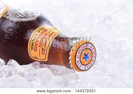Newcastle Brown Ale On Ice