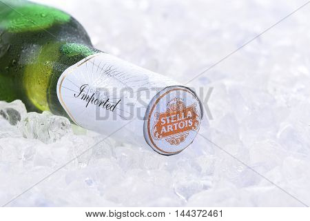 Stella Artois Beer Closeup