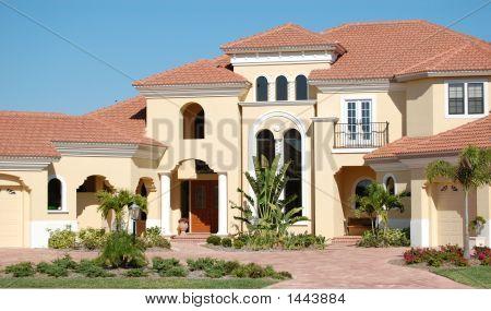 American House #7