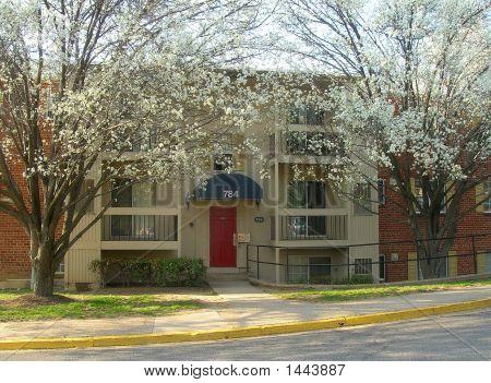 Virginia Apartment In Spring