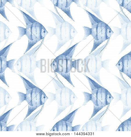 Scalar. Backgrouns with watercolor fish. Seamless pattern 3