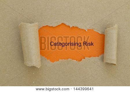 Categorising Risk written under torn paper .