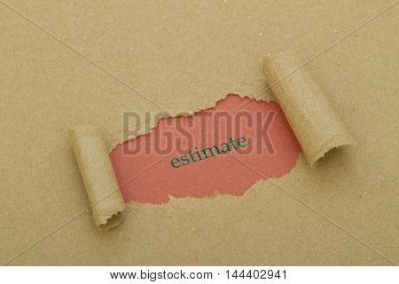 Estimate word written under torn paper .