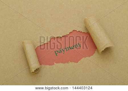 PAYMENT TERMS written under torn paper .