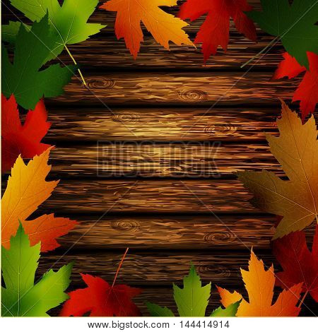 Wooden wall with autumn leaves frame and falling leaves vector illustration