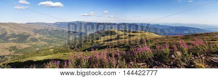 Stara Planina Mountain In Serbia
